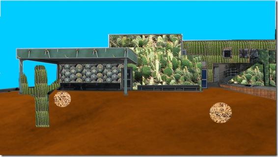 cactus-Bertrand Julien 3-12