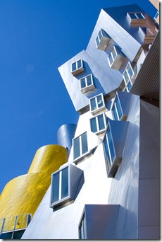 New-MIT-building-New-MIT-building_designed-Frank-Gehry_Cambridge-Massachusetts