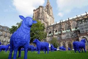 moutons bleus de la paix
