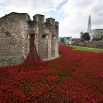 Analyse de The Tower Poppies de Paul Cummins et Tom Piper