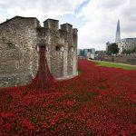 Analyse de The Tower Poppies de Paul Cummins et Tom Piper